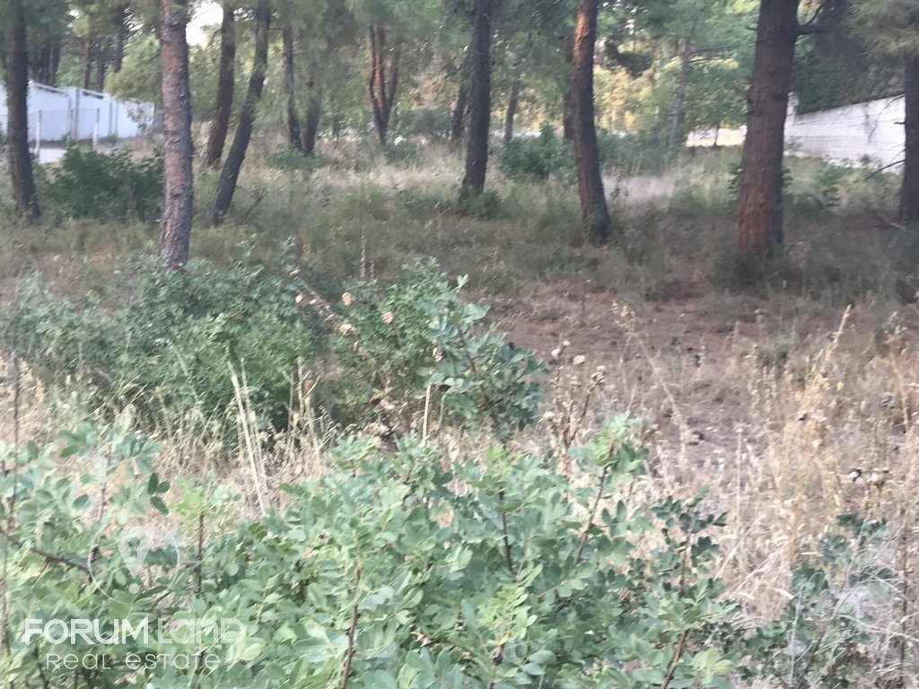 Land for Sale -  Thessaloniki East